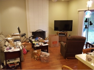 Living Space Before